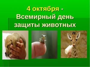 Неделя защиты животных